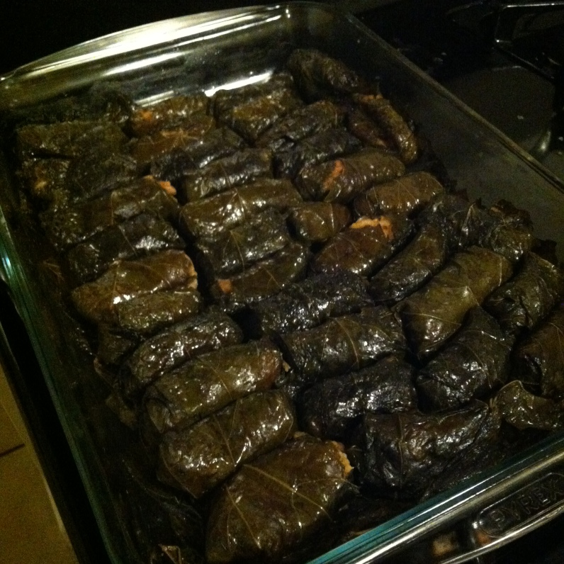 Stuffed Grape Leaves!