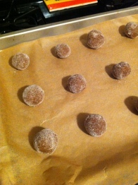"Roll the dough into 1"" balls and coat them in the gingered sugar"