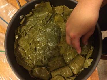 Line your pan with extra leaves and arrange your stuffed leaves close together